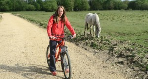 Cycling getaway to the New Forest