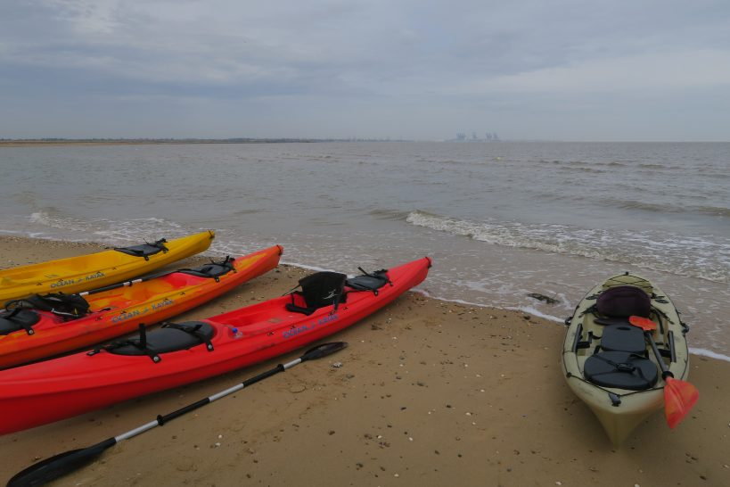 day-trip-from-london-kayaking-with-seals