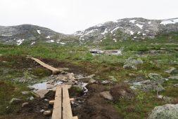 lapland-hiking-pyha-luosto-national-park-finland